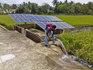 solar energy, irrigation, Egypt, farming, sustainable energy